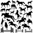 Collection of horse vector — Stock Vector