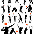 Collection of volleyball vector — Stock Vector