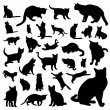 Collection of cat — Stock Vector