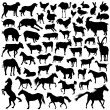 Stock Vector: Collection of farm animal