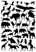 Collection of animal silhouettes — Stock Vector