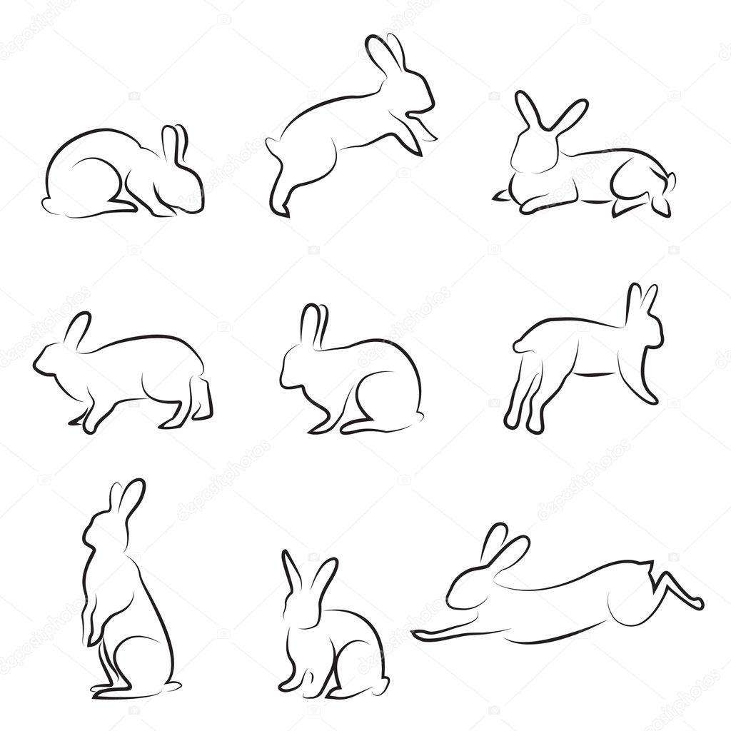 Line Art Rabbit : Kanin ritning — stock vektor bogalo