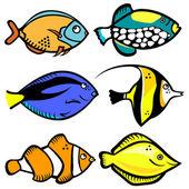 Fish graphic — Stock Vector