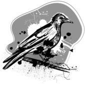 Crow grunge design — Stock Vector