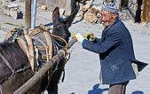 Turkish farmer — Stock Photo