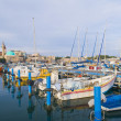 Acre port — Stock Photo #8743291