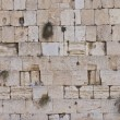 The Western wall — Stock Photo #8743863