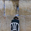 The Western wall — Stock Photo #8744071
