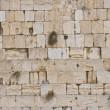 The Western wall — Stock Photo #8744102