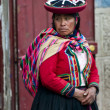 Peruvian woman — Stock Photo #8744907