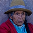 Peruvian woman — Stock Photo #8745038