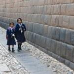 Peruvian children — Stock Photo #8745547