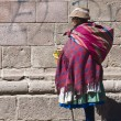Peruvian woman — Stock Photo #8745669