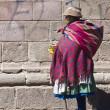 Peruvian woman — Stock Photo #8745669