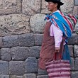 Peruvian woman — Stock Photo #8745950