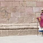 Peruvian woman — Stock Photo #8746130