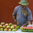 Colombifruit seller — Stock Photo #8749226
