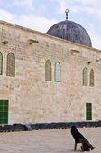 El Aqsa mosque — Stock Photo