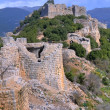 Nimrod fortress - Stok fotoraf