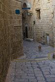 Old Jaffa — Stock Photo