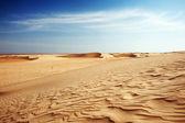 Sand dunes in Sahara — Stock Photo