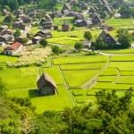 Ogimachi village — Stock Photo
