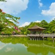 Gazebo in Nara — Stock Photo #8879337