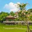 Gazebo in Nara — Stock Photo #8879341