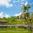 Gazebo in Nara — Stock Photo #8879360