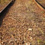 Rail Road Tracks — Stock Photo #10163967
