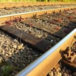 Rail Road Tracks — Stock Photo #10163977
