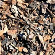 Leaf compost mulch pattern — Stock Photo