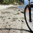 Bike on beach — Stock Photo #8352482