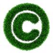 Grass copyright symbol — Foto Stock