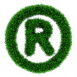 Grass trademark symbol — Stock Photo
