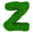 Grass letter Z — Stock Photo #9102150
