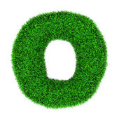 Grass letter O — Stock Photo