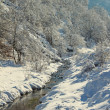 Stock Photo: Winter stream