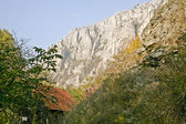 Detail of the Turda Gorges — Stock Photo