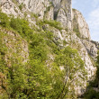 Turda Gorges, Cape Needle — Stock Photo #10468778