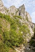 Turda Gorges, Cape Needle — Stock Photo