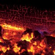 Stock Photo: Sizzling logs