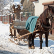 A horse-drawn sleigh — Stock Photo