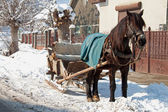 A horse-drawn sleigh — Stock Photo