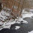 A river in winter — Stock Photo