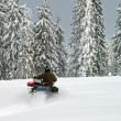 Stock Photo: Mon snowmobile