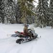 Stock Photo: Man on a snowmobile