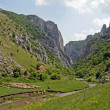 Turda Gorges — Stock Photo #9979267