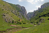 Turda gorges — Stockfoto