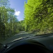 Driving in nature — Stock Photo